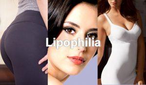 preview_lipofiling_en